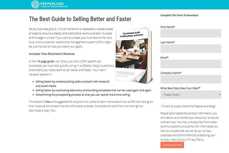 Ebook Landing Page Example